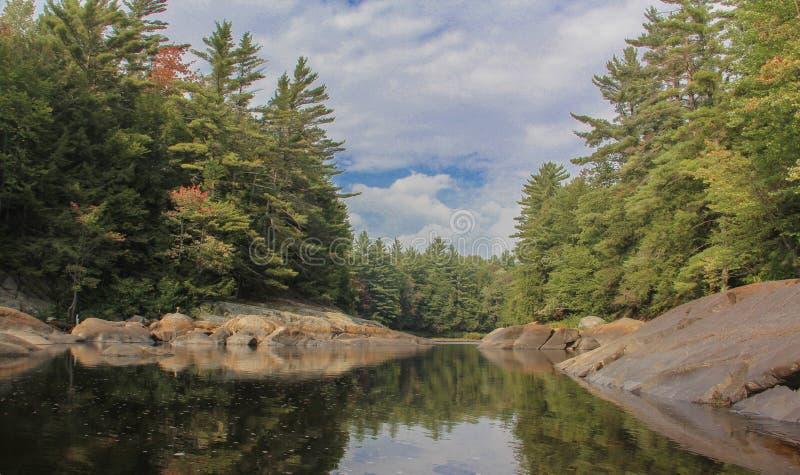 Lato rzeki widok obraz royalty free