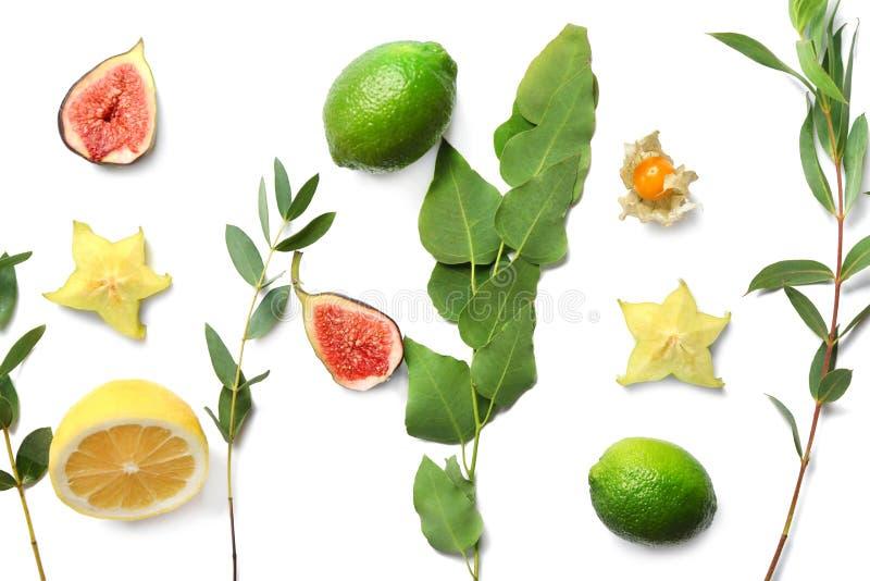 Lato skład z świeżymi tropikalnymi liśćmi i owoc na białym tle obrazy royalty free