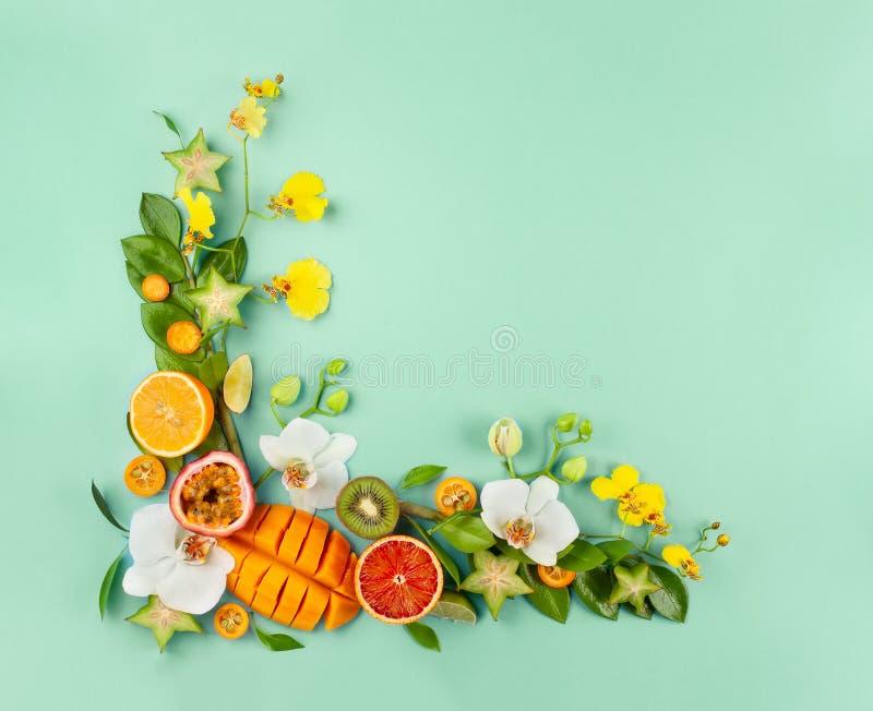 Lato skład z owoc i kwiatami na błękitnym tle zdjęcie stock