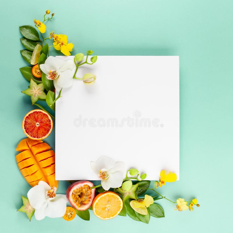 Lato sk?ad z owoc i kwiatami na b??kitnym tle fotografia stock