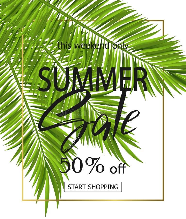 Lato sprzedaży sztandar, plakat z palma liśćmi i handwriting literowanie, tropikalny tło Wektorowa ilustracja EPS10 ilustracji