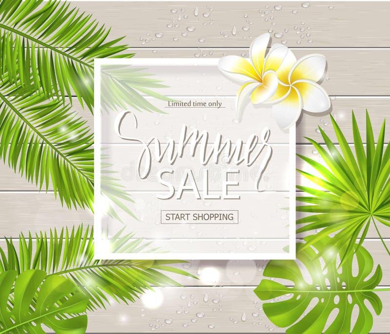 Lato sprzedaży sztandar, plakat z tropikalnymi kwiatami, rośliny, liście i krople na drewnianej desce, również zwrócić corel ilus ilustracji