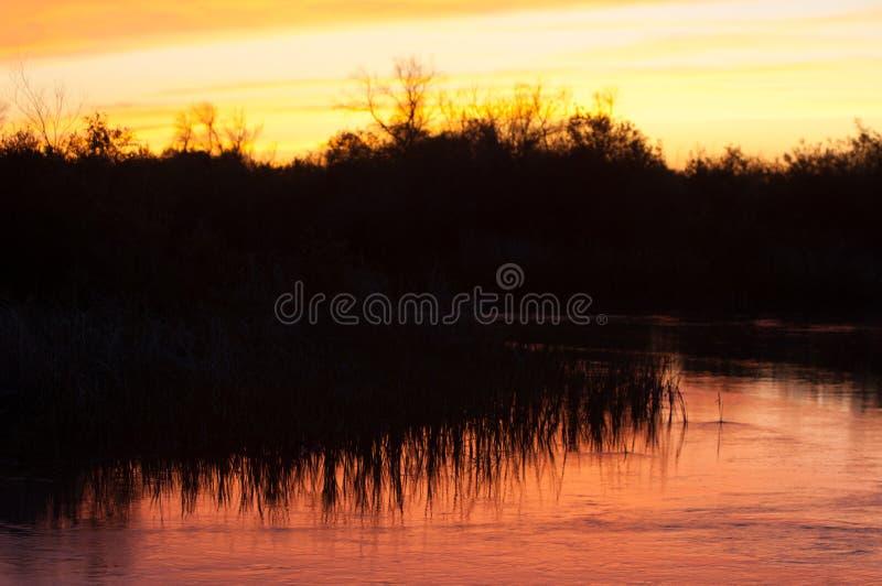 Lato step zmierzch, wschód słońca Ognisty niebo dobry ciułacz, backgrou obraz stock