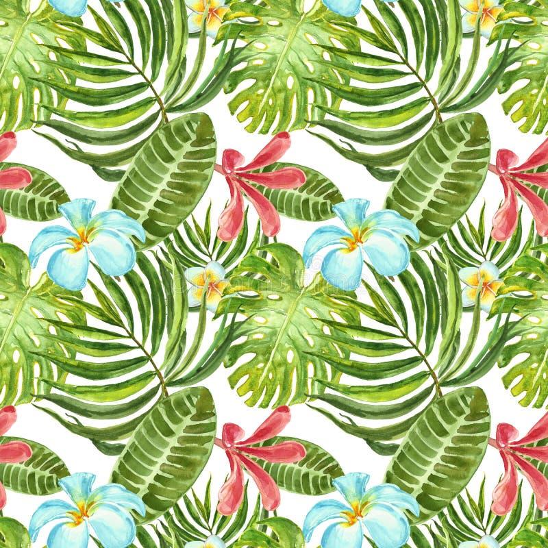 Lato tropikalny druk Akwarela bezszwowy wzór z roślinami, kwiatami i liśćmi egzota, Zielony palmowy liść, plumeria na bielu ilustracja wektor