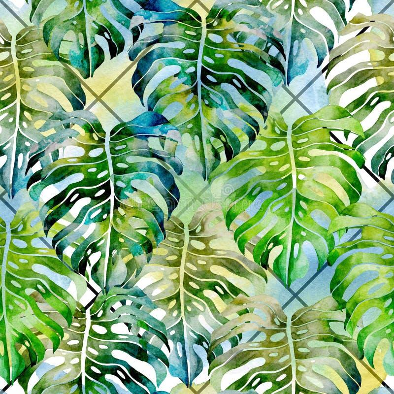 Lato tropikalny wz?r monstera li?cie banki target2394_1_ kwiatono?nego rzecznego drzew akwareli cewienie ilustracja wektor