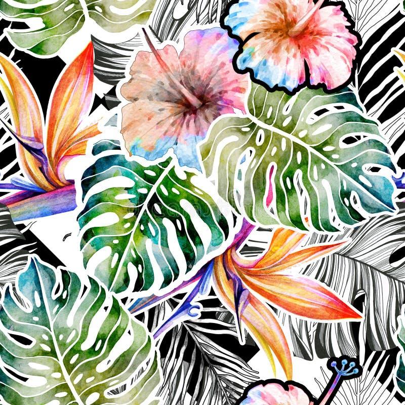 Lato tropikalny wz?r monstera li?cie banki target2394_1_ kwiatono?nego rzecznego drzew akwareli cewienie ilustracji