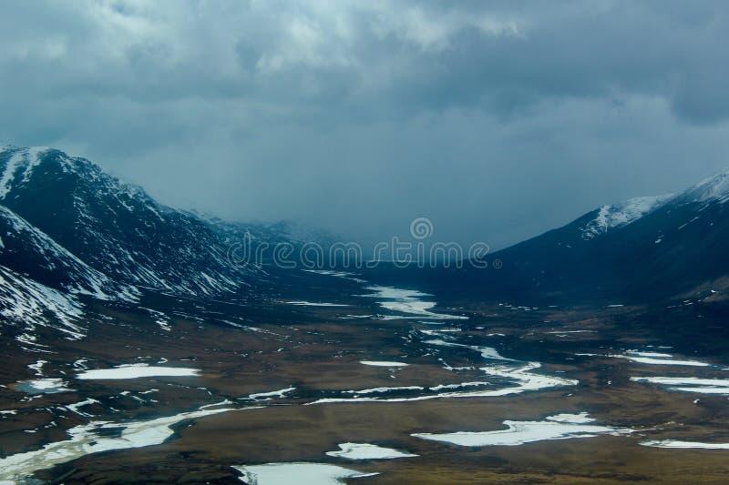 Lato w Arktycznym fotografia royalty free