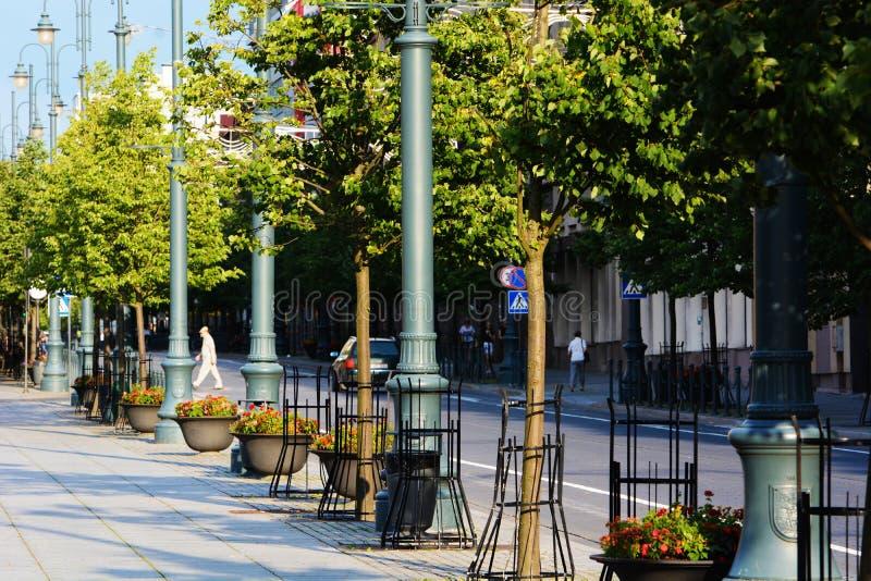 Lato w Vilnius zdjęcia stock