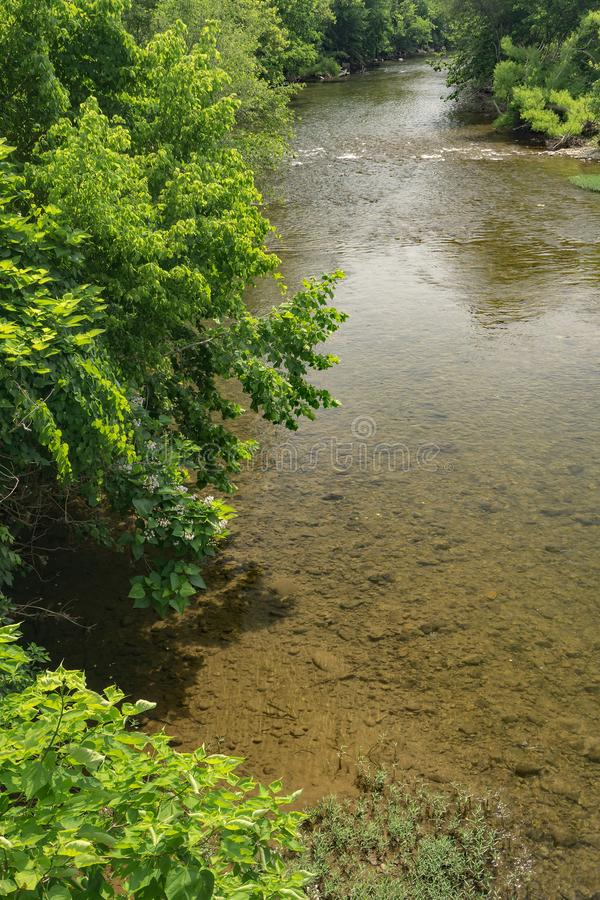 Lato widok Roanoke rzeka fotografia royalty free