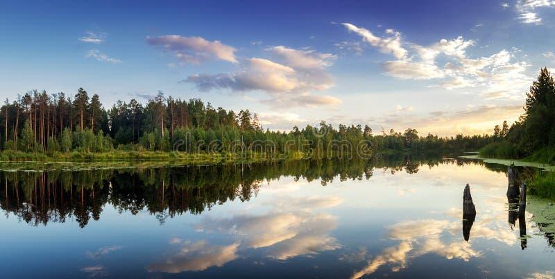 Lato wieczór krajobraz na Ural jeziorze z sosnami na brzeg, Rosja fotografia royalty free