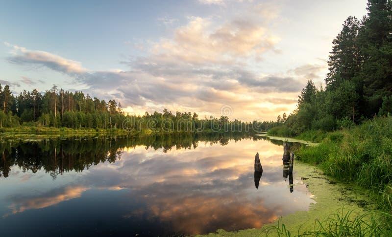 Lato wieczór krajobraz na Ural jeziorze z sosnami na brzeg, Rosja fotografia stock