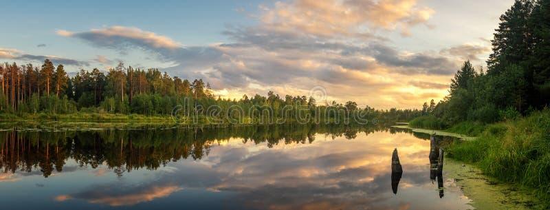 Lato wieczór krajobraz na Ural jeziorze z sosnami na brzeg, Rosja obrazy stock