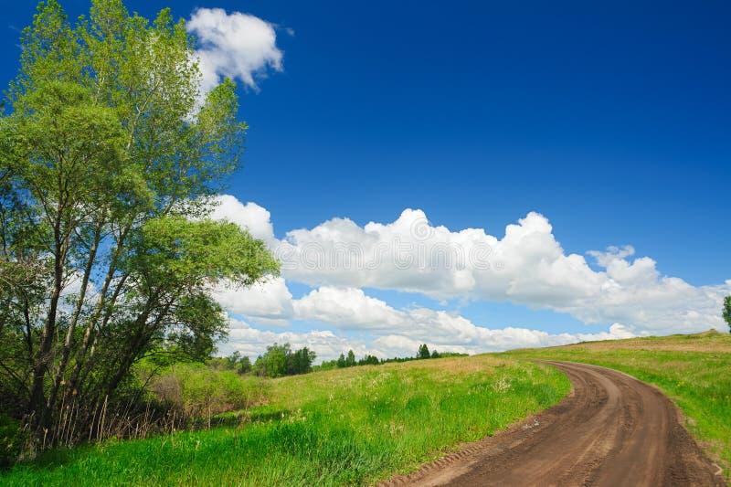 Lato wiejska droga wygina się gdy wspinający się wzgórze z zieloną trawą błękit chmurnieje cumulusu niebo zdjęcie stock