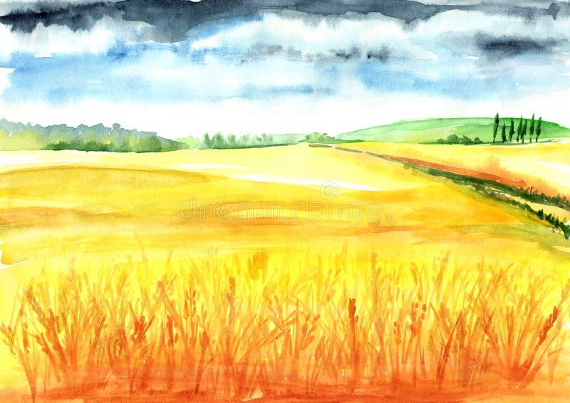 Lato wiejski krajobraz dzień lata gorąca pola pszenicy Akwareli ręka rysująca ilustracja, tło ilustracja wektor