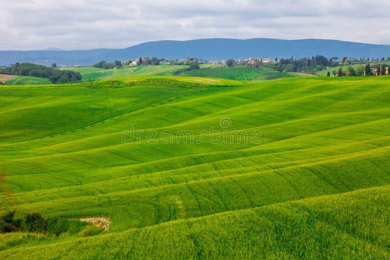 Lato wiejski krajobraz z falistymi wzgórzami zdjęcia stock
