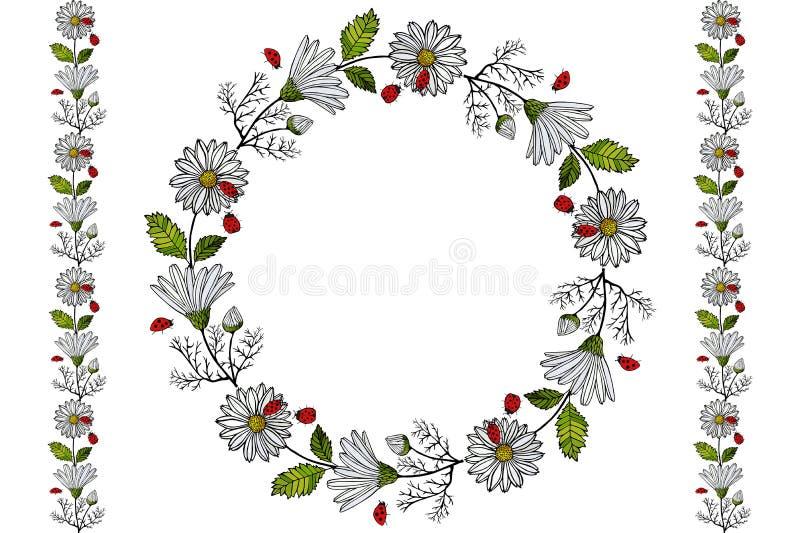 Lato z stokrotkami i biedronki niekończący się horyzontalnym muśnięciem Niekończący się horyzontalna granicy i kwiatu girlanda, o ilustracji