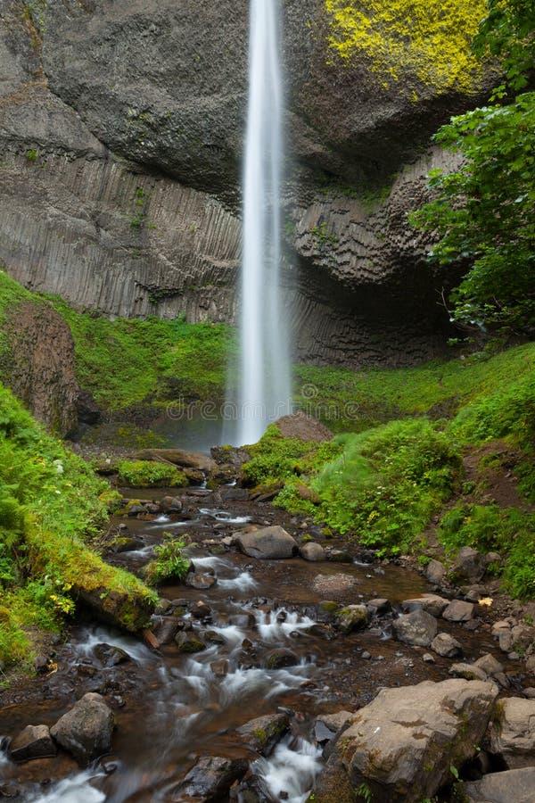 Latourell понижается в ущелье Рекы Колумбия, Орегон стоковые изображения rf