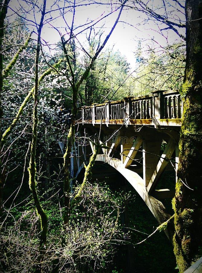 Latourell cai ponte foto de stock royalty free