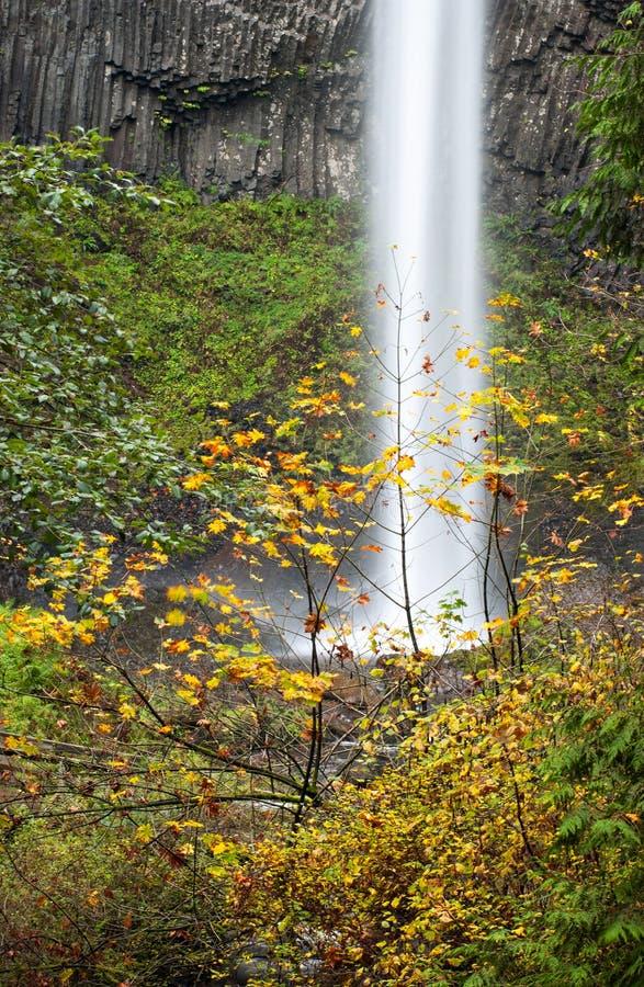 Free Latourell Falls, Columbia River Gorge, Oregon Royalty Free Stock Image - 38622326
