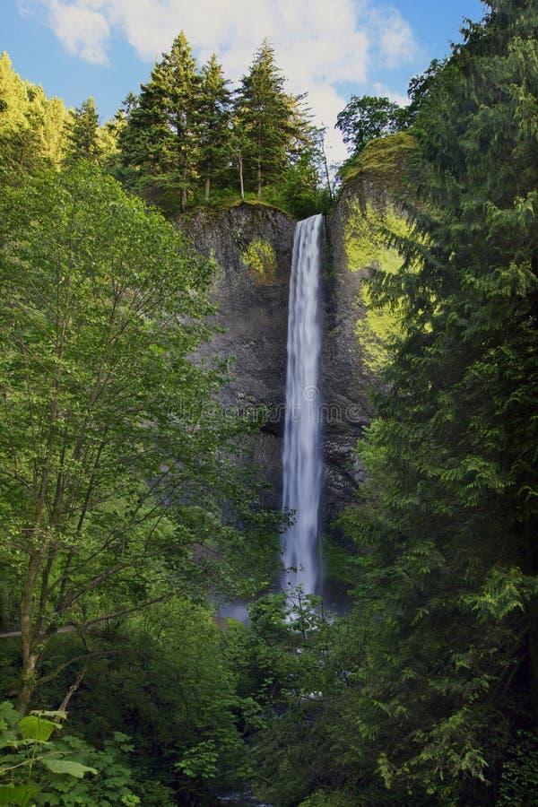 Free Latourell Falls Oregon 2 Stock Photo - 14787780