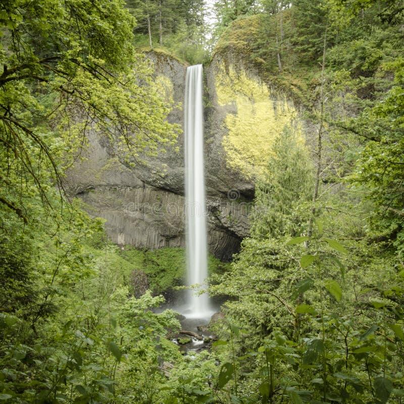 Latourell spadki, Kolumbia Rzeczny wąwóz, Oregon zdjęcia stock