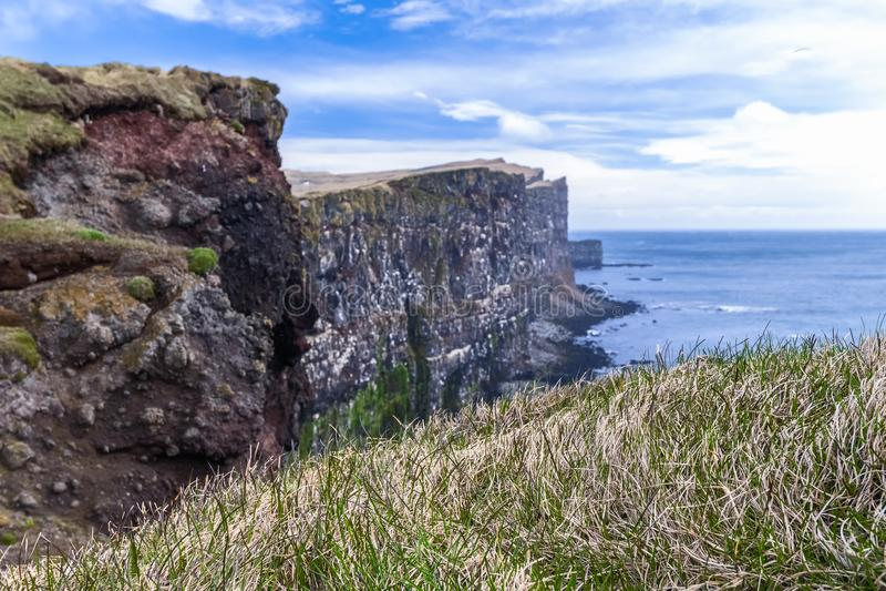 Latrabjarg-Vogelklippen Westfjords, Island lizenzfreie stockfotos