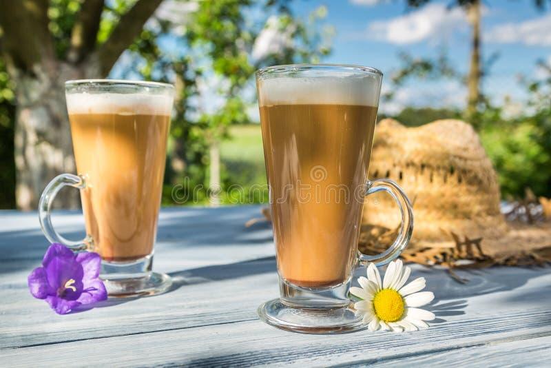 Latte кофе в солнечном саде стоковые изображения rf