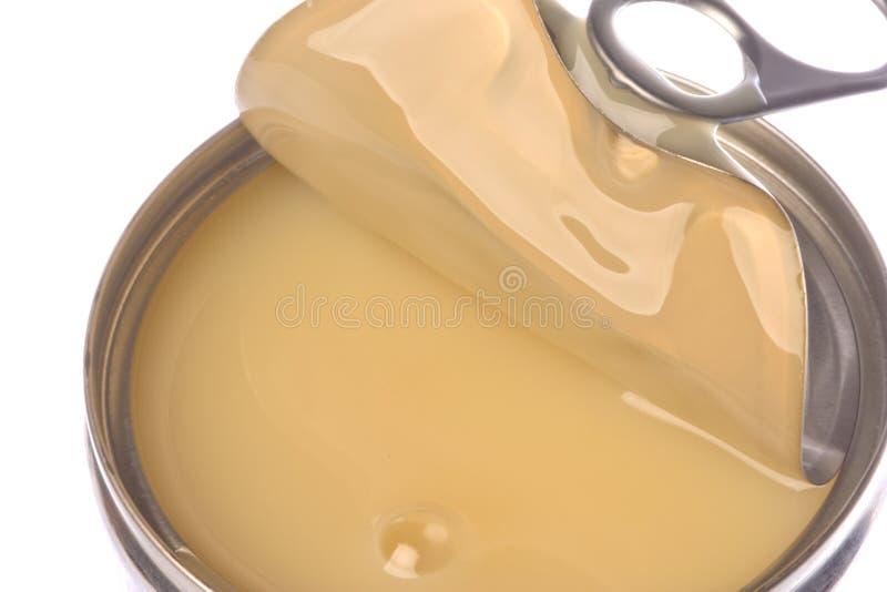 Latte condensato isolato fotografia stock libera da diritti