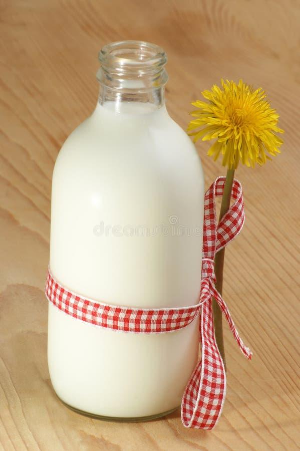 Latte della capra in una piccola bottiglia fotografia stock