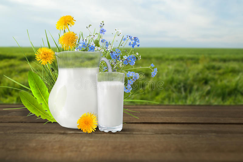 Latte e giacimento soleggiato della molla fotografia stock libera da diritti