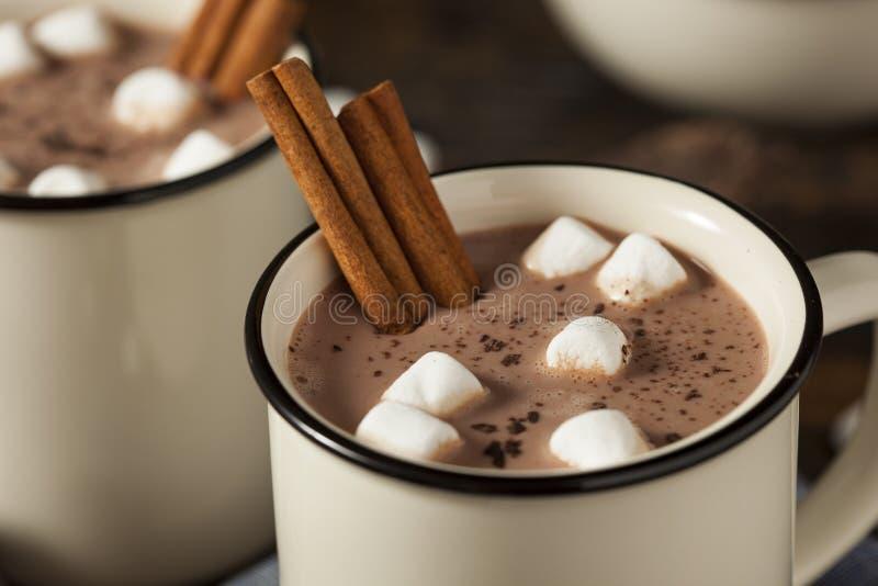 Latte gastronomico della cioccolata calda fotografie stock libere da diritti