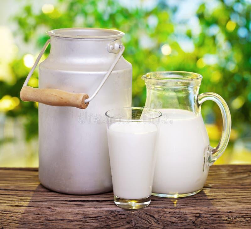 Latte in vari piatti. fotografie stock