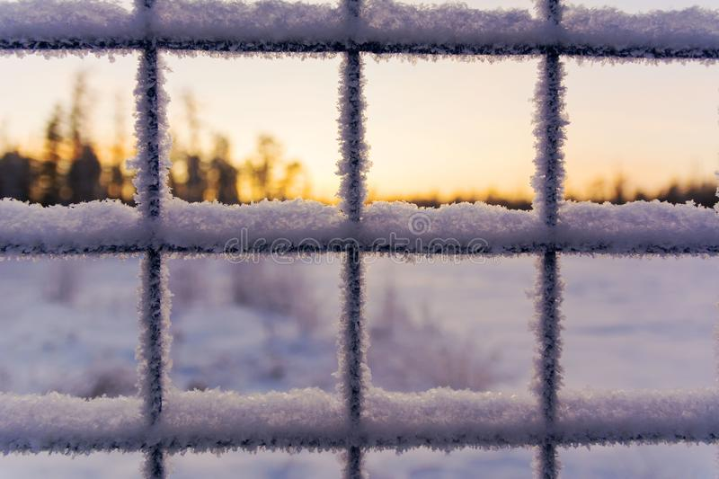 Lattice covered with snow. Abstract winter background. Iron lattice with ice against the background of snow. Frosty fence - winter texture royalty free stock photos