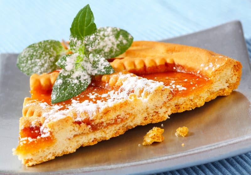 Lattice topped apricot tart royalty free stock photos