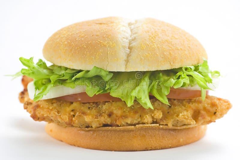 Lattuga croccante del formaggio della cipolla del pomodoro dell'hamburger del pollo fotografie stock
