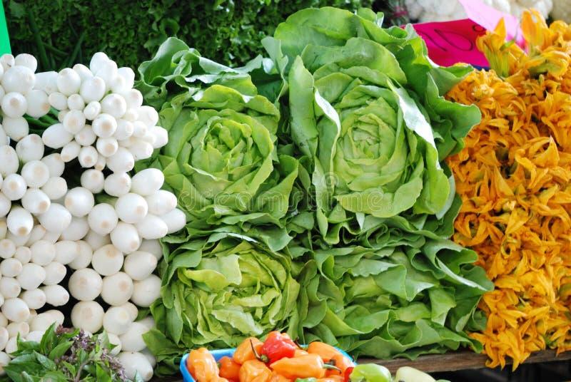 Lattughe organiche nel mercato libero a Messico City fotografie stock libere da diritti