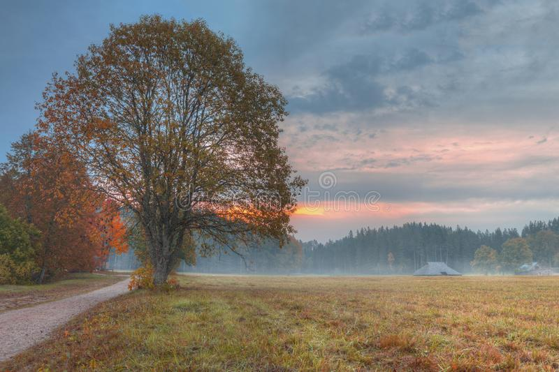 Latvia country side landscape with fog and mist after sunset. With beautiful twilight stock photo