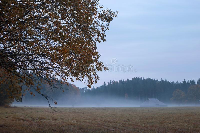 Latvia country side landscape with fog and mist after sunset. With beautiful twilight royalty free stock photography
