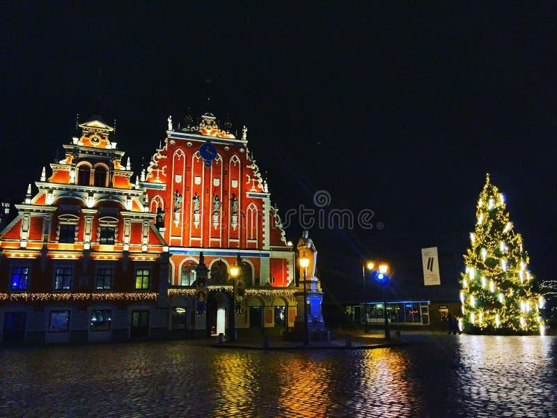 Latvia royalty free stock photography