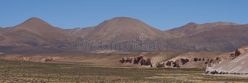 Lauca国家公园,智利风景  免版税库存照片