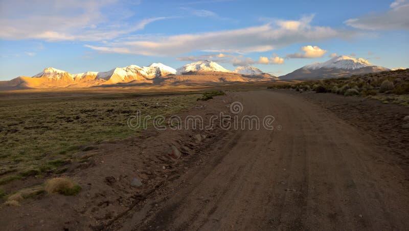 Lauca Nationalpark - Chile lizenzfreies stockbild