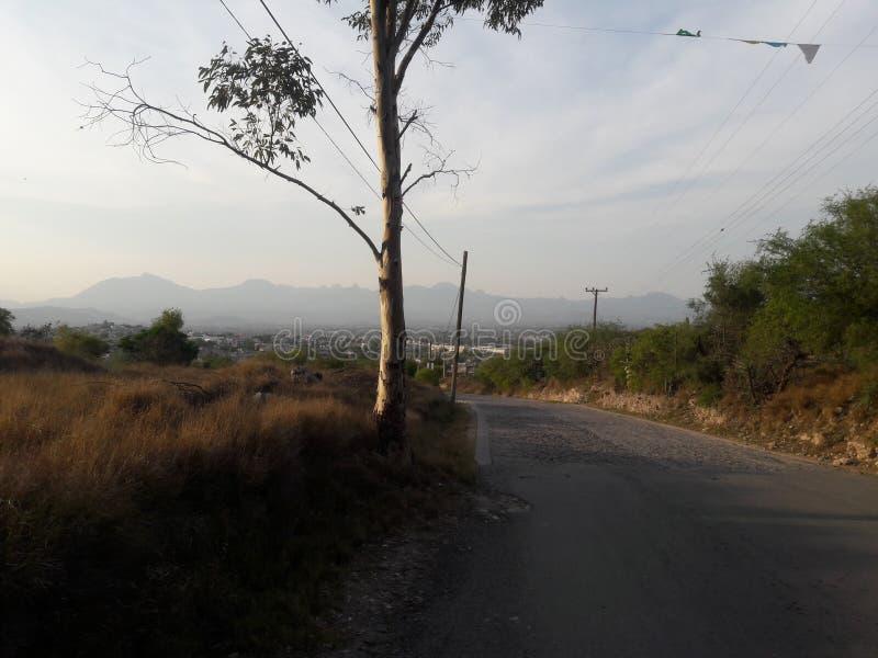 Laufen durch die Berge stockfotos