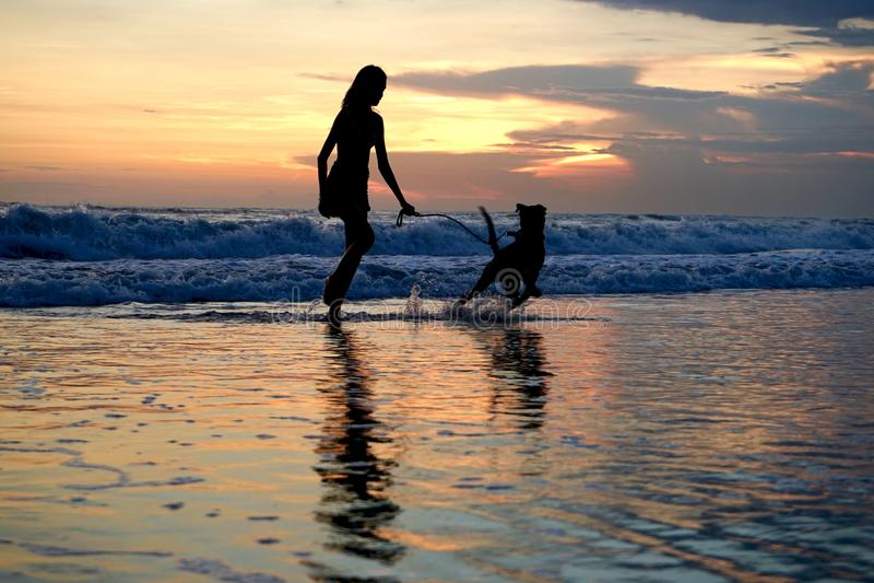 Laufen mit einem Hund auf dem Strand im Sonnenuntergang in Bali lizenzfreie stockfotografie