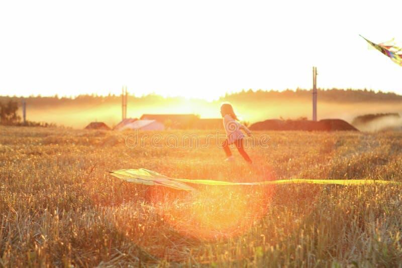 Laufen Sie auf Wiese mit einem Drachen im Sommer auf der Natur lizenzfreies stockbild