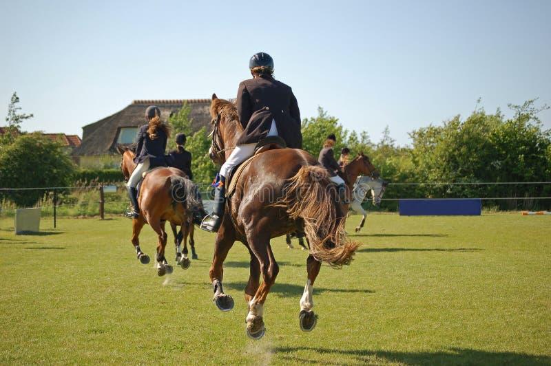 Laufende galoppierende Pferdenkonkurrenz stockfotos