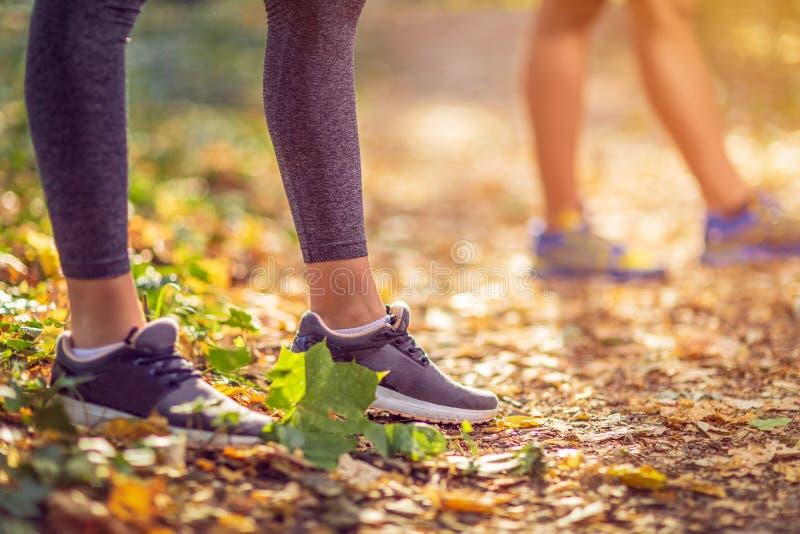 Laufende Sporteignungsfrau Schließen Sie oben von den weiblichen Beinen und von den Schuhen stockfoto