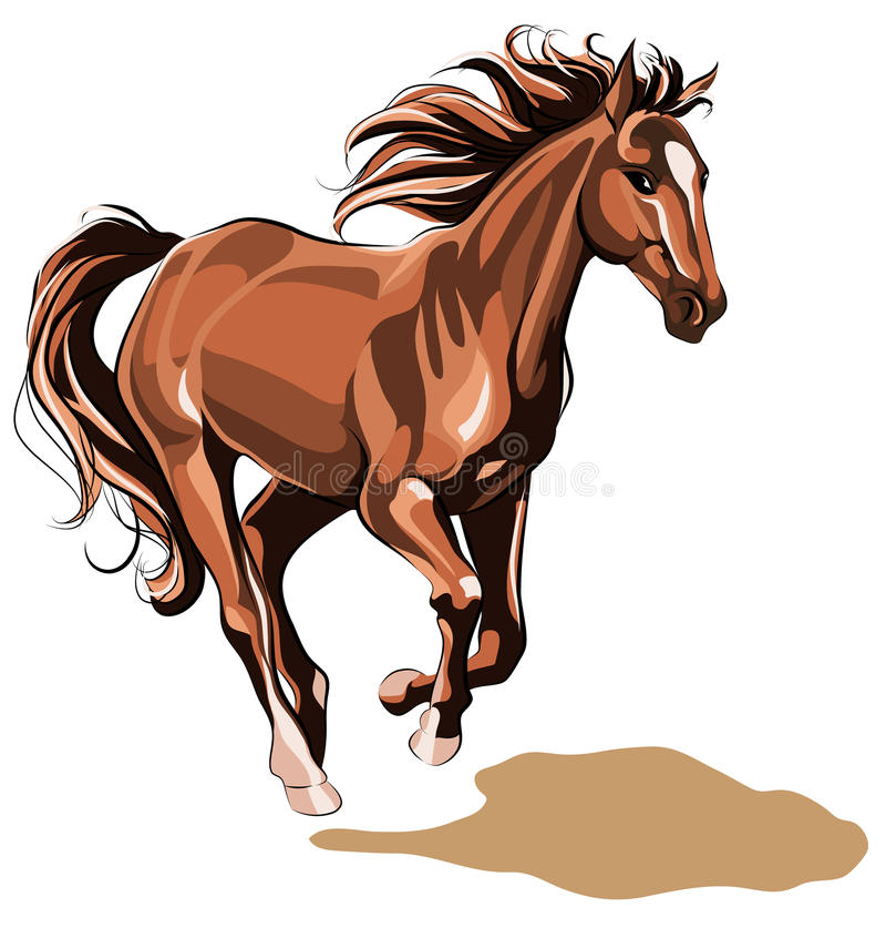 Laufendes Pferd lizenzfreie stockfotografie