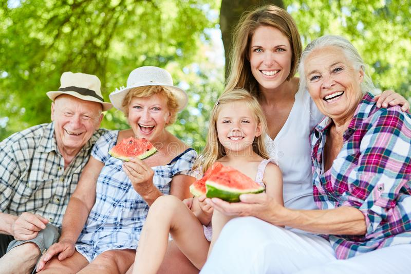 Laughing extended family in the park in summer stock photos