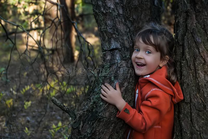 Laughing five-years-old girl stands between two trees in autumn forest. royalty free stock images
