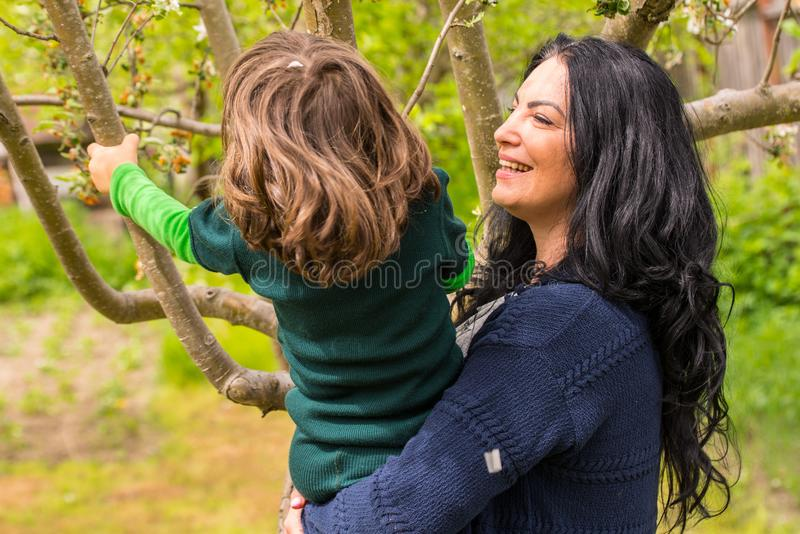 Laughing mother and son in garden. Laughing mother and son having fun in garden trying to shake the tree petals flowers stock image